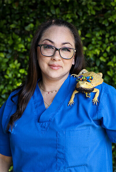 jessica cobos veterinary assistant at newport harbor animal hospital