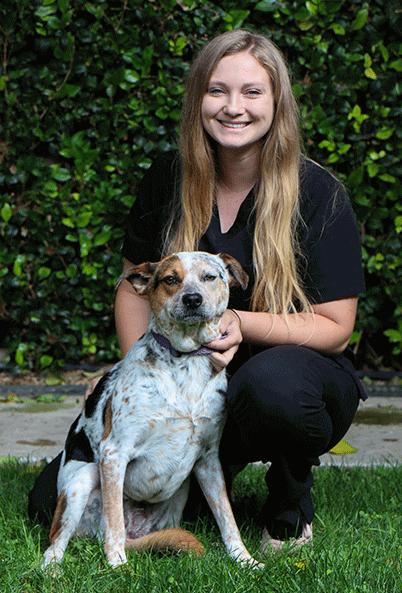 newport beach animal hospital team member support staff